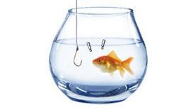 Assegurances de Pesca