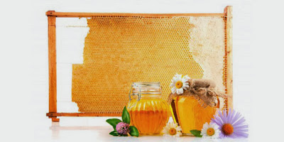 weight loss with honey