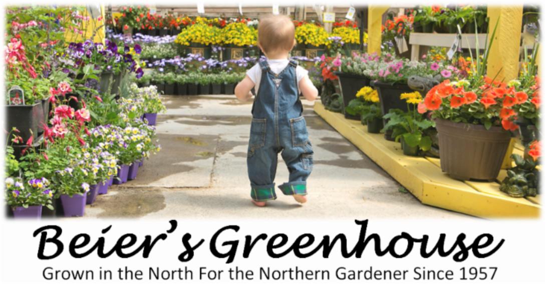 Beier's Greenhouse