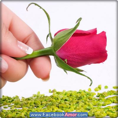 Lindas De Amor Para Mujeres Imagenes Facebook Perfil
