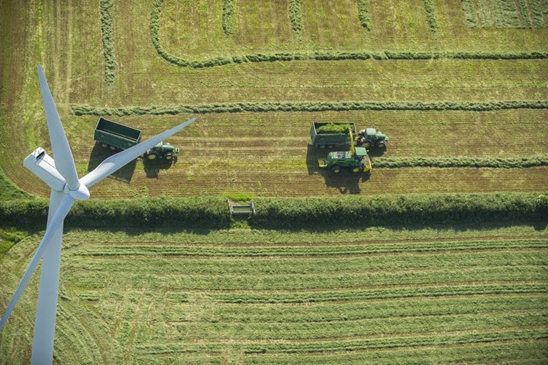 Farmers working beneath wind turbines, Wales.