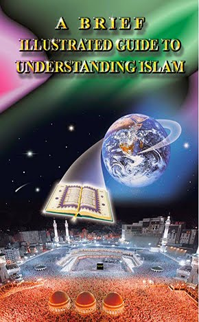 A  Brief Illustrated Guide Understanding Islam