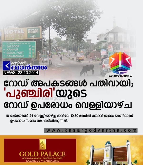 Kasaragod, Kerala, Bovikanam, Road, Accident, Accidental-Death, Vehicle, Travel,