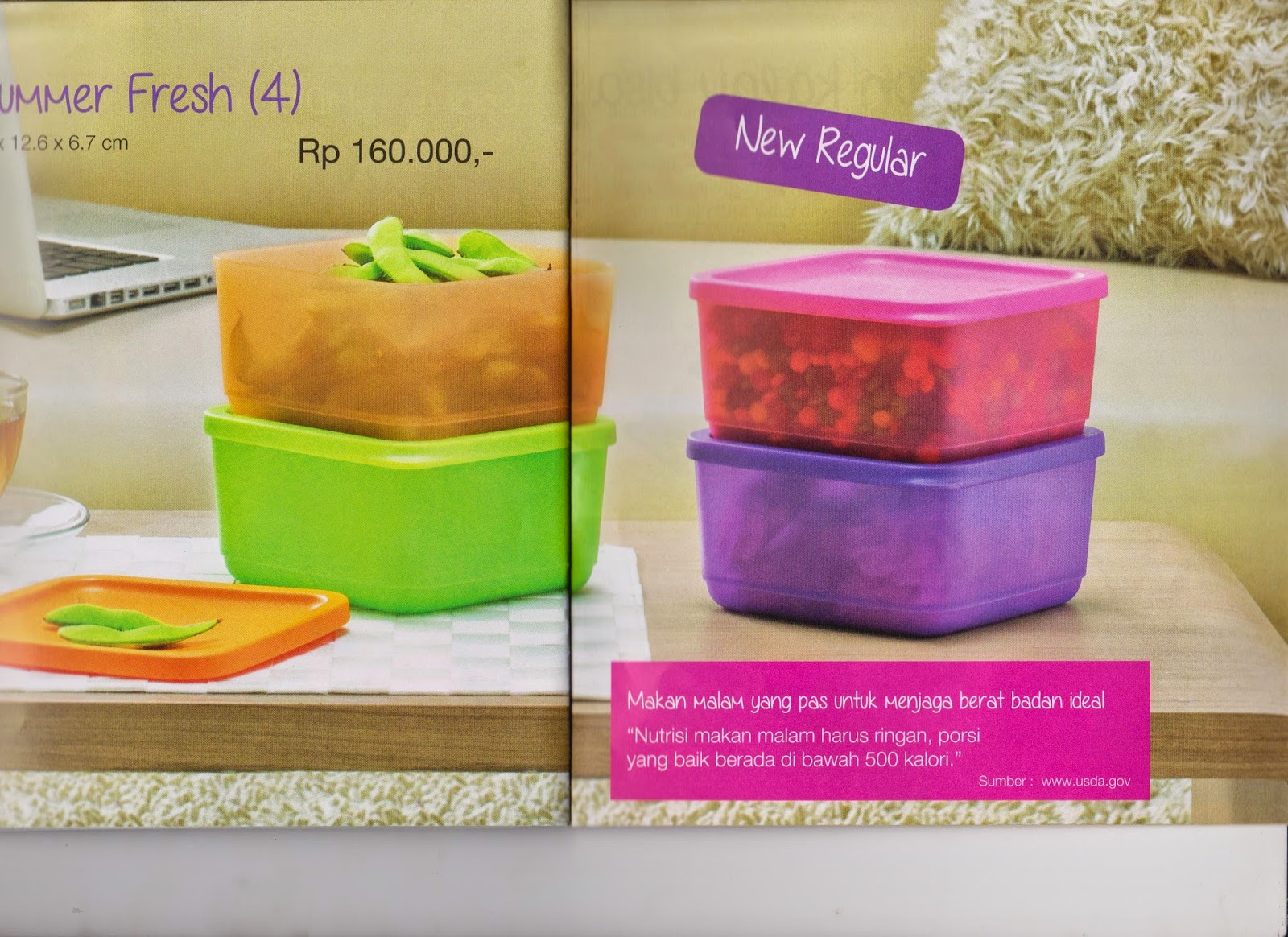 Distributor Tupperware Murah Bekasi 2014