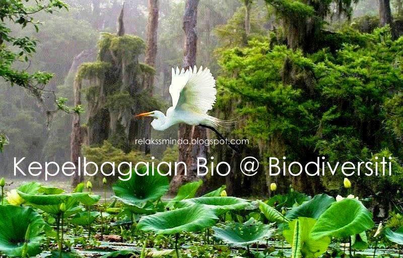 Kepentingan Kepelbagaian Bio Atau Biodiversiti
