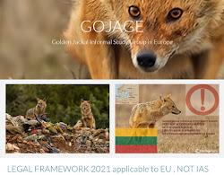 GOJAGE (new) FREE WEBSITE