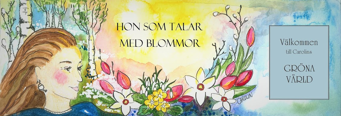 Hon som talar med blommor