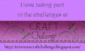 C.R.A.F.T Challenge