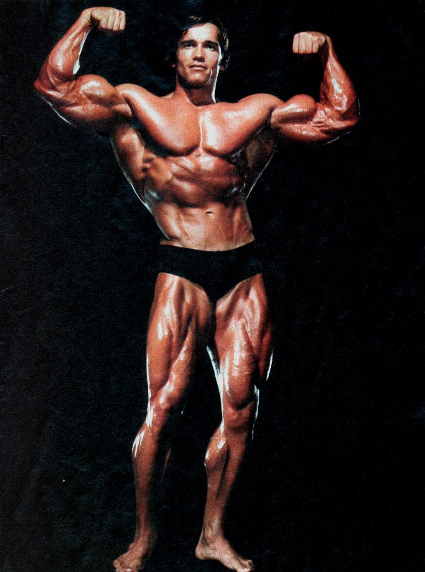 Arnold Schwarzenegger Bodybuilding Wallpaper 12