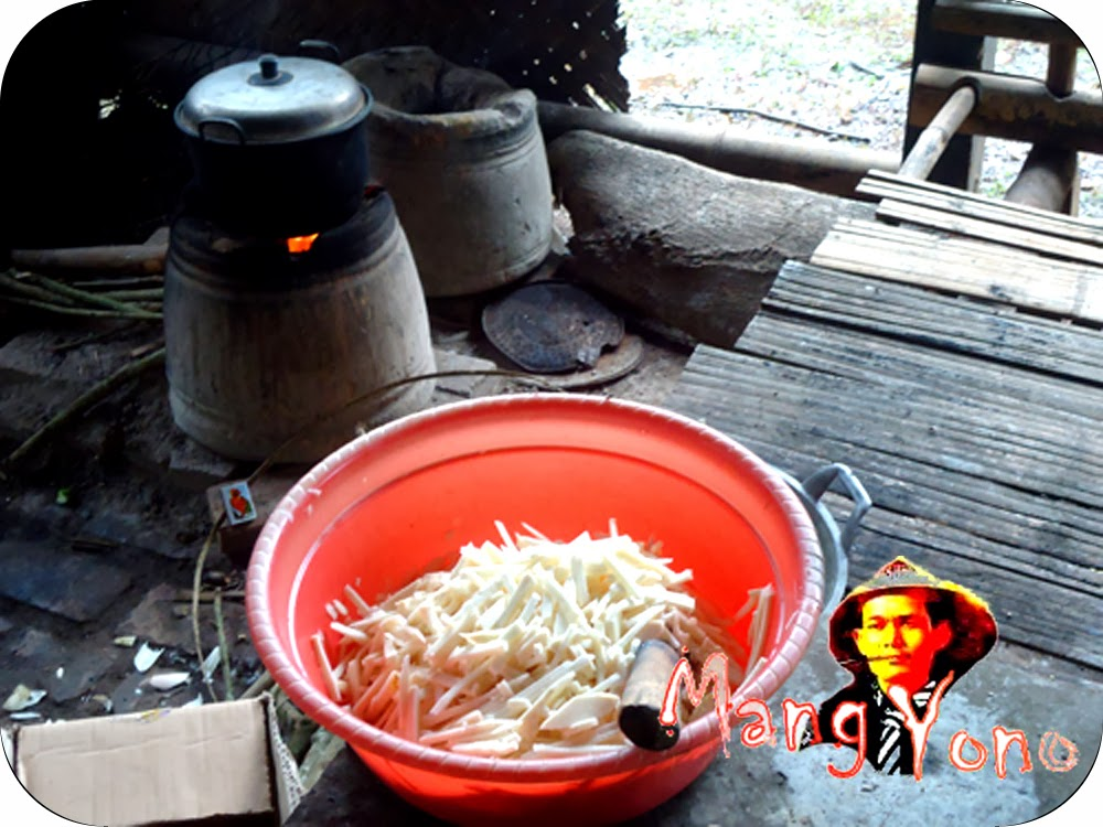 Cara mengambil, mengawetkan dan mengolah Iwung bahasa sunda untuk Tunas Bambu atau Rebung