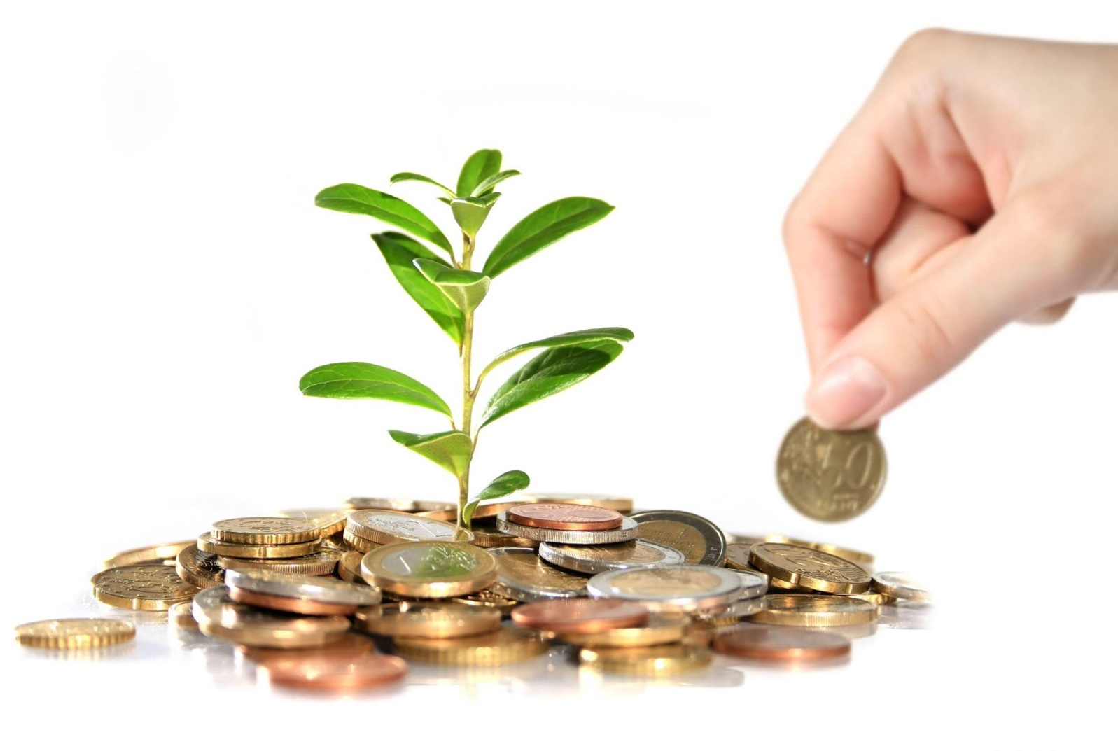 Как сделать бизнес успешным и получить прибыль: самые 68