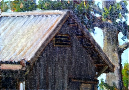 Oil painting of a galvanised iron shed with a tall conifer behind.