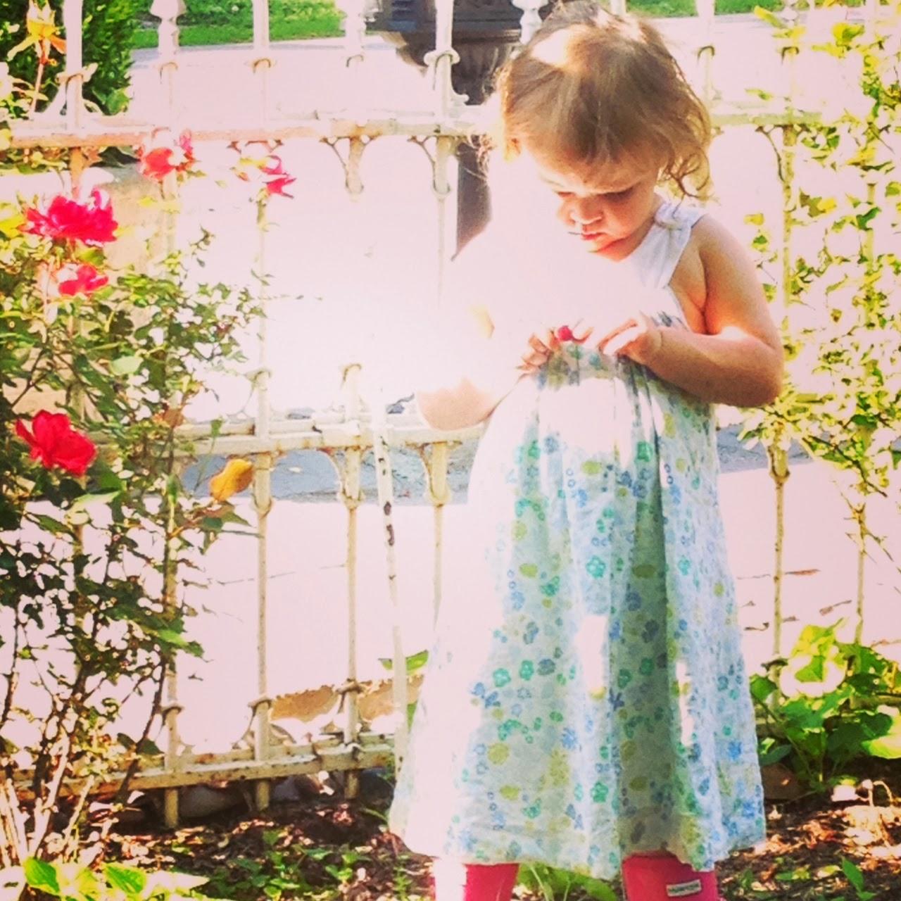 Sophia ..studying rosebuds