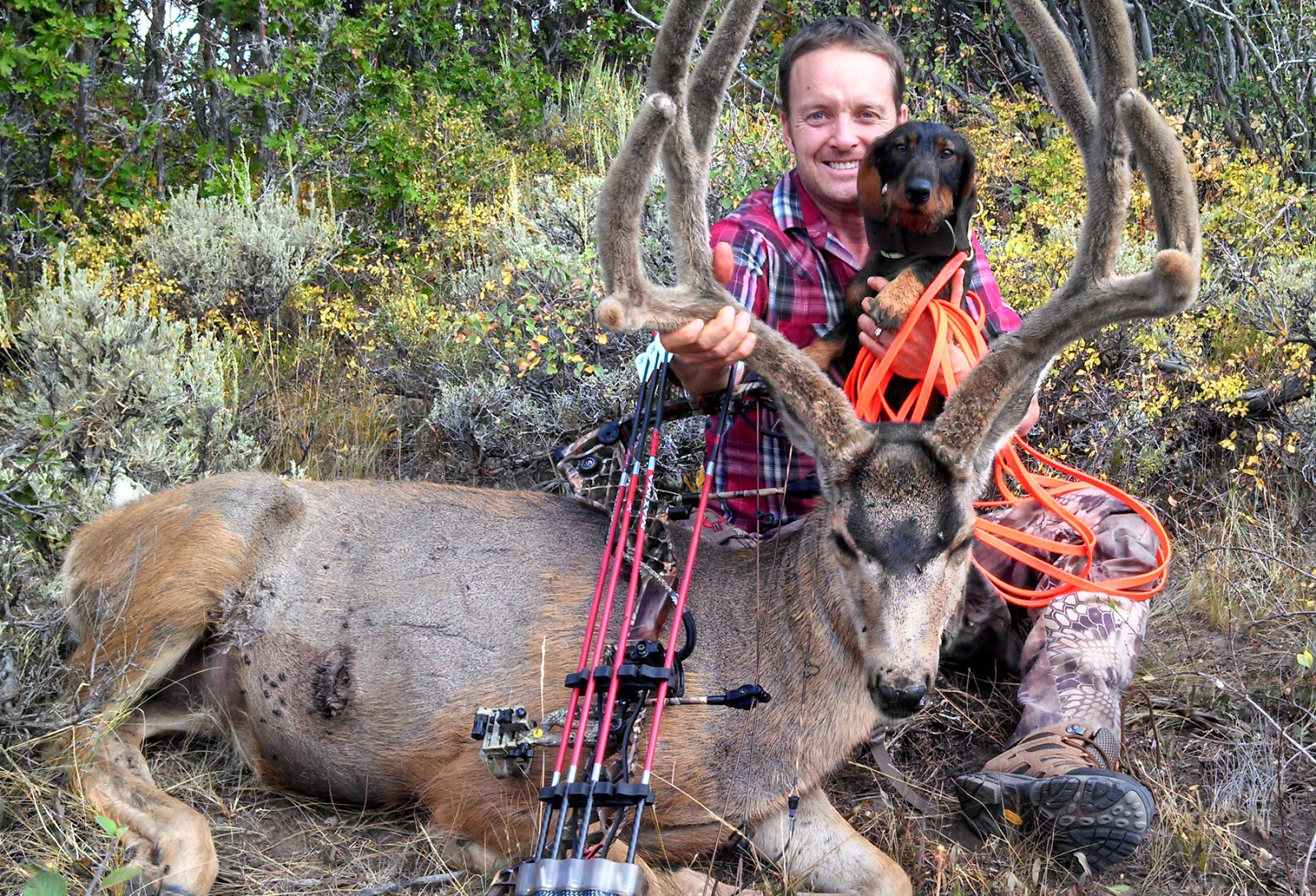 BORN-TO-TRACK BLOG: Remi and Justin, a blood tracking team from Utah ...