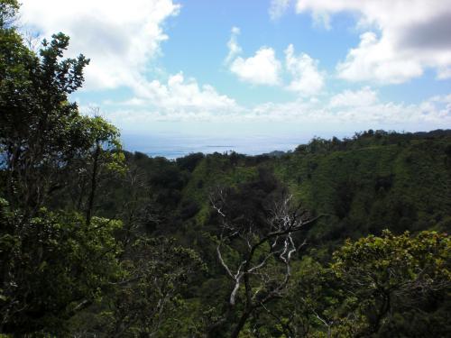 http://silentobserver68.blogspot.com/2012/12/hawaiian-islands-are-dissolving-study.html