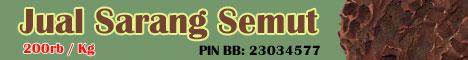 Jual Sarang Semut Asli Papua - Mahkotadewa.Net