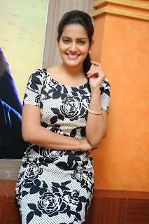Vishaka singh latest glam pics 029.JPG