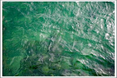 Байкальская воды