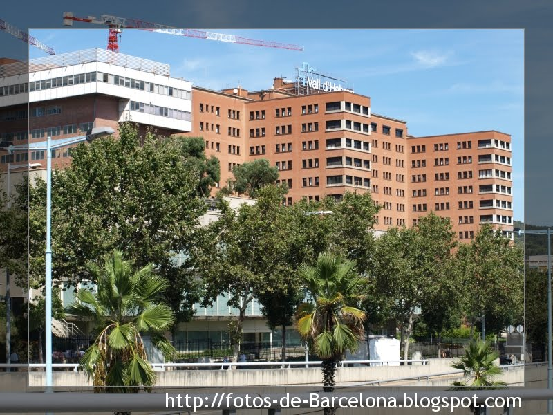 hospital valle hebron:
