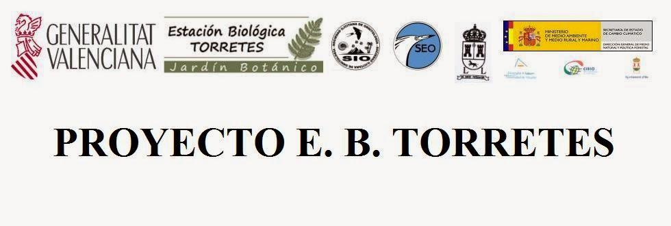 PROYECTO E. B. TORRETES