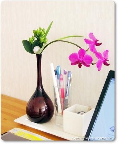 vintage vas, orkidé i vas, orkidé som snittblomma, emelie ekborg, emelie ekborg florist