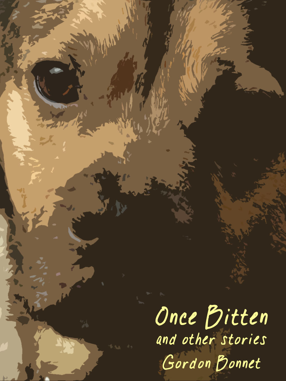 Sixteen short stories for Kindle!