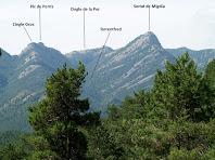 Vessant nord de la Serra de Picancel