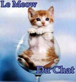 Le Meow Du Chat