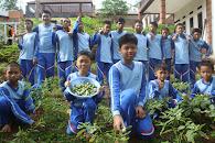 Budidaya Terong di Pesantren Bisnis SMP IT Istana Mulia Anyer Carita