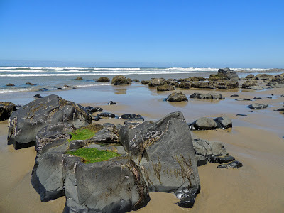 a rocky beach below Yachats Oregon