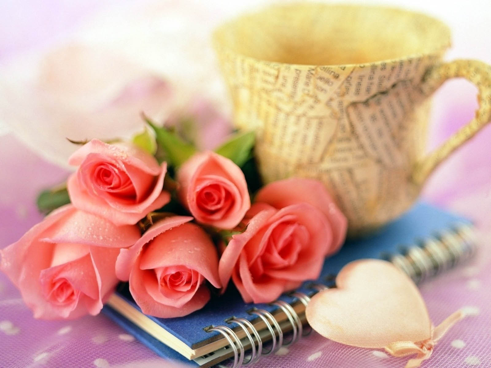 Cute baby hd wallpaper roses wallpapers roses wallpapers mightylinksfo