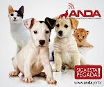 ANDA - Agência de Notícias de Direitos Animais