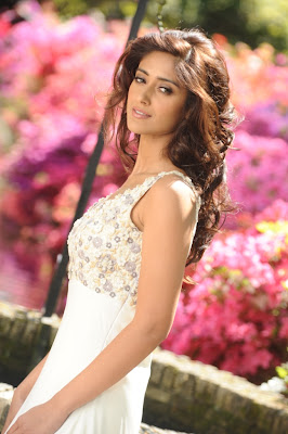 Vijay Ileana New Stills