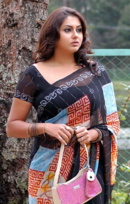 south indian actor namitha in saree showing navel pic