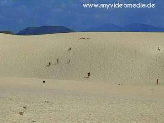 drifting dunes Fuerteventura