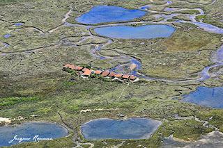 Cabanes d ostreiculteurs sur l'ile aux oiseaux