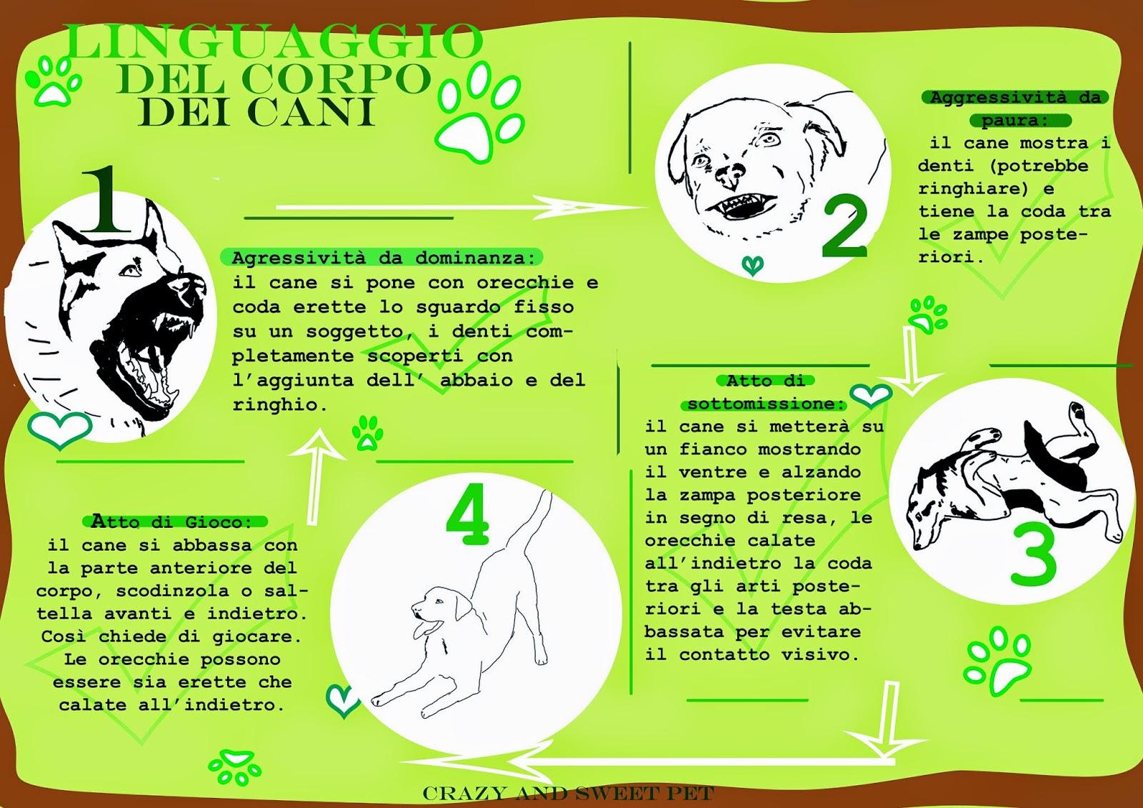 Illustrazione-comportamento-canino