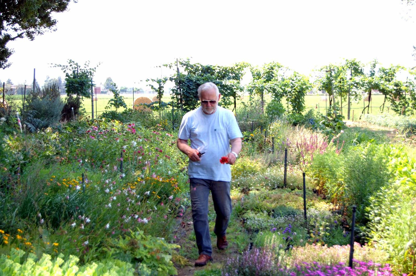 A scuola di pollice verde col maestro giardiniere che for Giardiniere bologna
