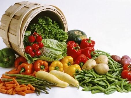 Makanan Lovebird Berikut Cara Pemberian Yang Baik Dan Benar