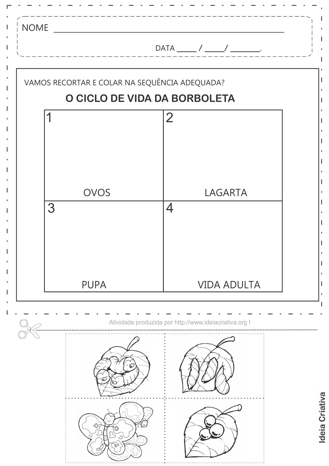 Favoritos Plano de Aula Ciclo de Vida da Borboleta Atividades | Ideia  DK95