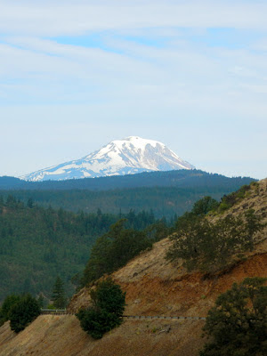 View of Mount Adams, WA
