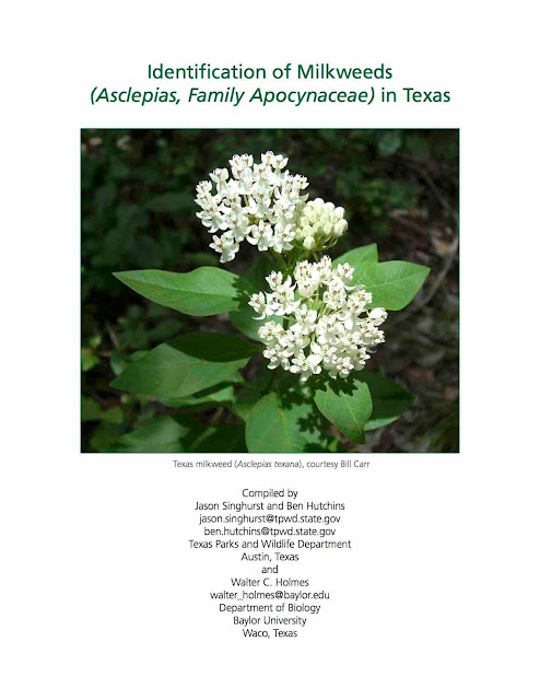 https://tpwd.texas.gov/huntwild/wild/wildlife_diversity/nongame/publications/media/TPWD-Identification-Milkweeds-Texas.pdf