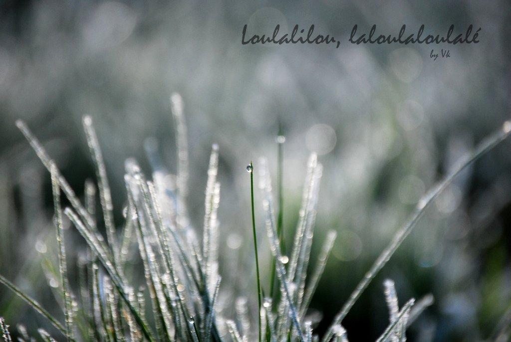 Loulalilou-laloulaloulalé