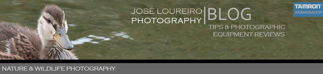 José Loureiro Photography Blog