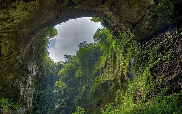 الغابات المطيرة هول ,صور خلفيات جميله