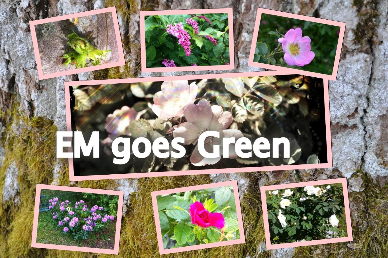 EM goes Green