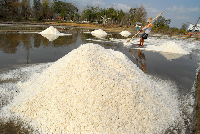 Pemerintah Dinilai Lamban Perbaiki Tata Kelola Garam Nasional