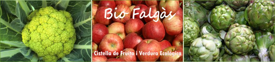 BIO FALGÀS, Fruita i Verdura Ecològica