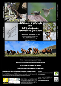 XVIIa edició del Concurs de Fotografia de la Vall de Camprodon