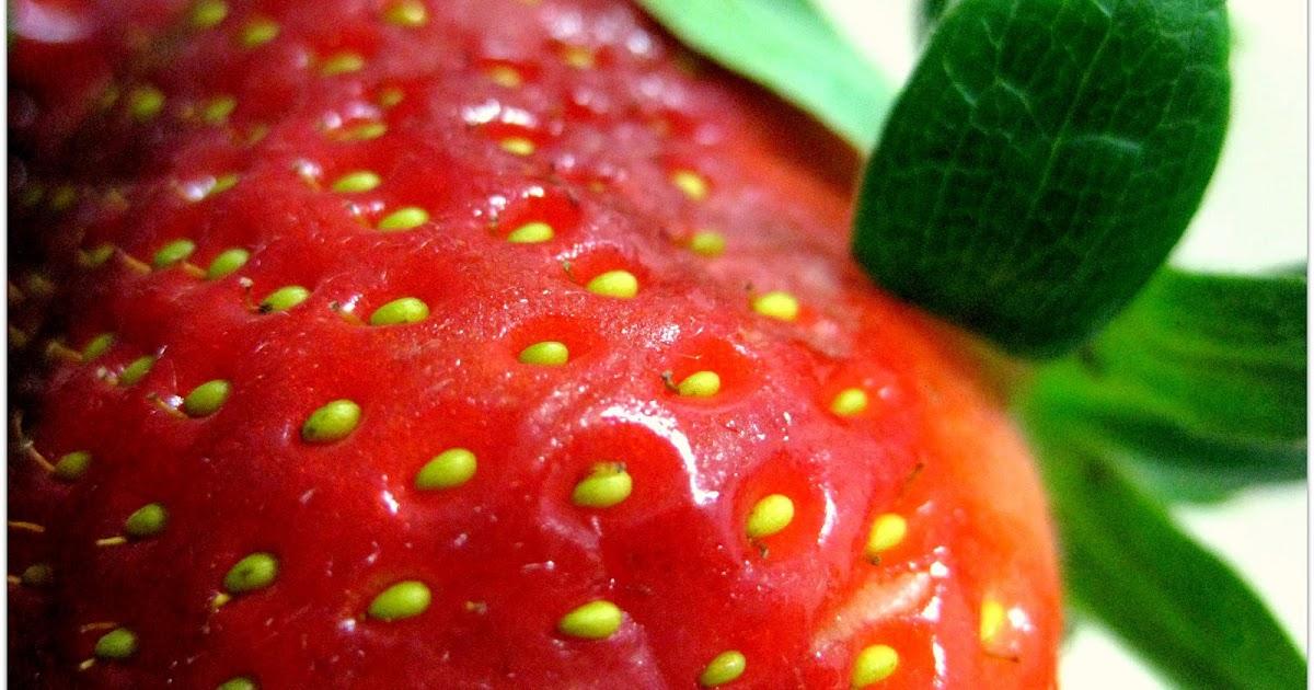 Como el proteína ayuda adelgazar